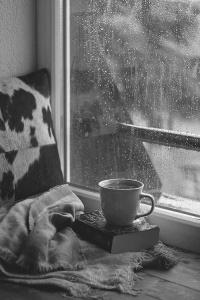 Rainy Day Reading